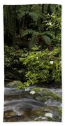 Forest Stream Beach Towel