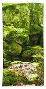 Forestry Beach Towel