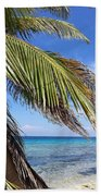 Laughing Bird Caye Beach Towel