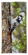 Lesser Spotted Woodpecker Beach Towel