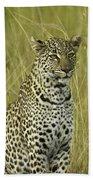 Lovely Leopard Beach Towel