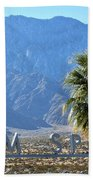 Palm Springs Welcome Beach Towel