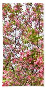 Pink Cherry Tree Beach Towel