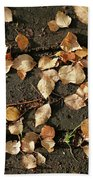 Silver Birch Leaves Lying On A Brick Path In A Cheshire Garden On An Autumn Day   England Beach Towel