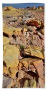 Splash Of Color In Valley Of Fire Beach Towel