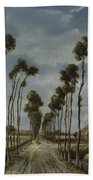 The Avenue At Middelharnis Beach Towel