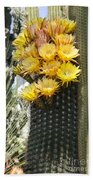 Yellow Cactus Flowers Beach Towel