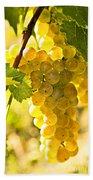 Yellow Grapes Beach Towel by Elena Elisseeva