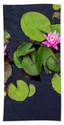 4425- Lily Pads Beach Towel