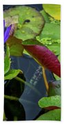 4466- Lily Pads Beach Towel