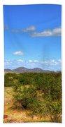 Sonora Desert Beach Sheet