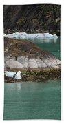 Alaska_00047 Beach Towel