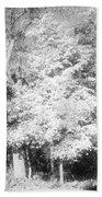 Ha Ha Tonka Beach Towel