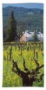 4b6394 Mustard In The Vineyards Beach Towel