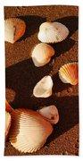 Beach Shells Beach Towel