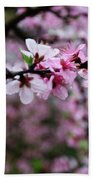 Blossoming Peach Flowers Closeup Beach Towel