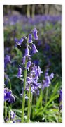 Bluebells Near Effingham In The Surrey Hills England Uk Beach Towel