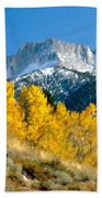 D C Landscape Beach Towel
