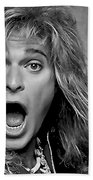 David Lee Roth Collection Beach Towel