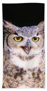 Great Horned Owl Beach Towel