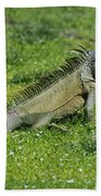 I Iguana Beach Towel