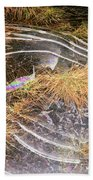5. Ice Prismatics In Grass 2, Loch Tulla Beach Towel