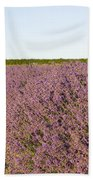 Lavender Fields Beach Towel