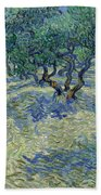 Olive Orchard Beach Towel