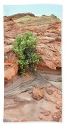 Sandstone Color In Valley Of Fire Beach Towel