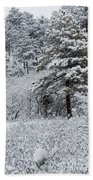 Snowstorm In The Pike National Forest Beach Towel