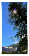 Tree Beach Sheet