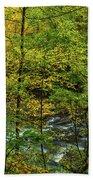 North Carolina Fall Colors Beach Towel