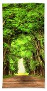 Landscape Native Beach Towel