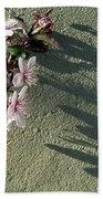 Tree Blossoms Beach Towel