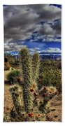 Anza-borrego Desert State Park Beach Towel
