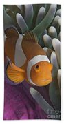 Malaysia, Marine Life Beach Towel