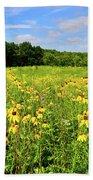 Marengo Ridge Wildflowers Beach Towel