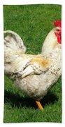 Chicken Beach Towel