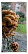 Mushroom Art Beach Towel
