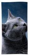 Russian Blue Cat Beach Sheet