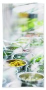 Salad Bar Buffet Fresh Mixed Vegetables Display Beach Towel