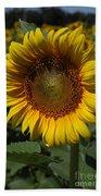 Sunflower Series Beach Towel