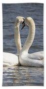 Swan -- Beach Towel