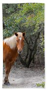 Wild Horses Beach Towel