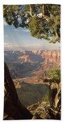 713261 V Desert View Grand Canyon Beach Towel