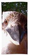 Australia - Kookaburra Stickybeak Beach Towel