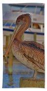 8- Brown Pelican Beach Towel