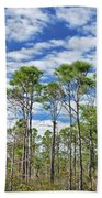 8- Cypress Sky Beach Towel