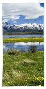 Springtime In Torres Del Paine Beach Sheet
