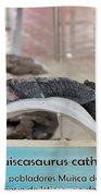 Centro De Investigaciones Paleontologicas Beach Towel